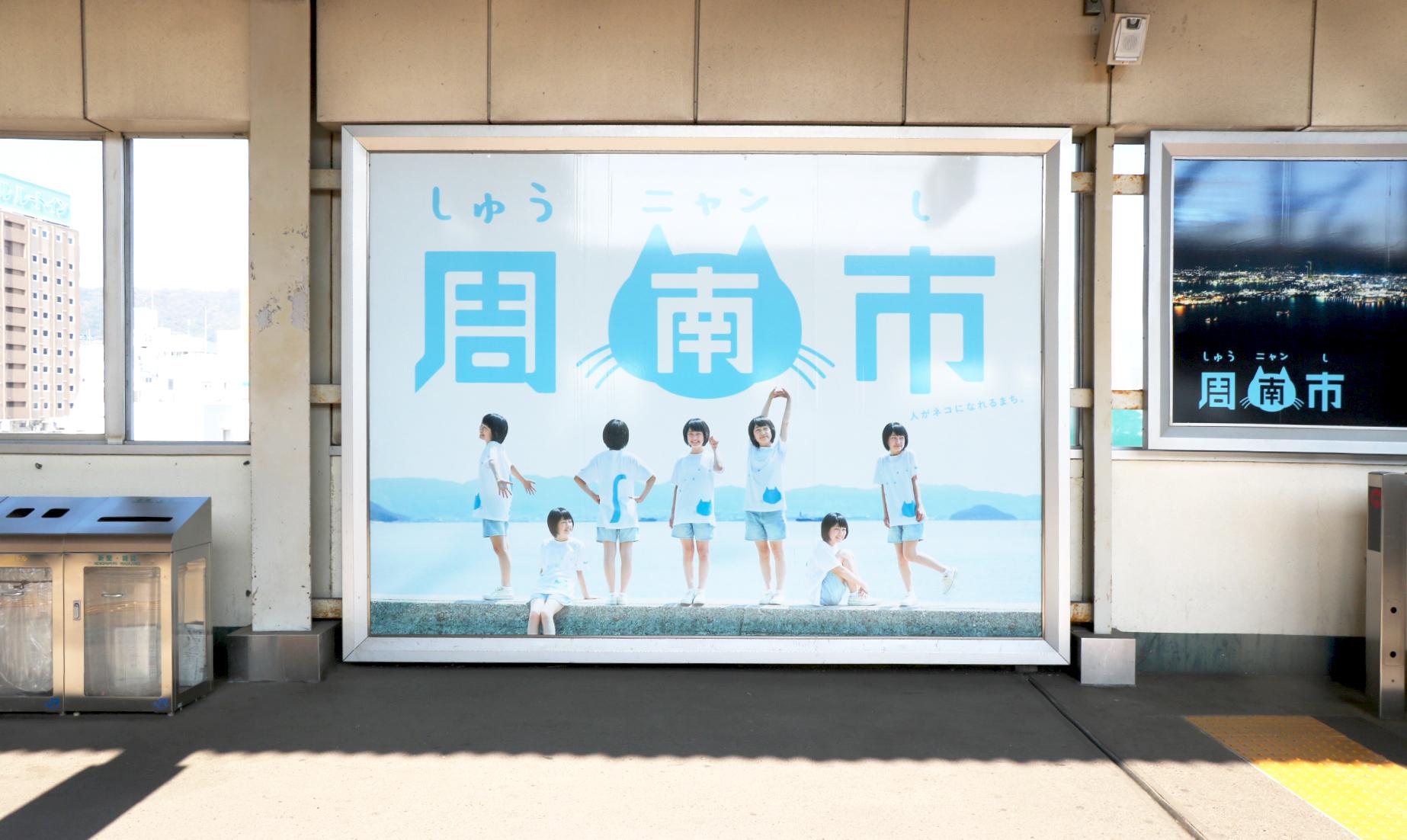 猫で町おこし!?不思議な町、山口県周南市(しゅうニャンし)でマッチングイベント参加!